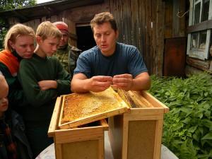 Пасечник обучает детей пчеловодству